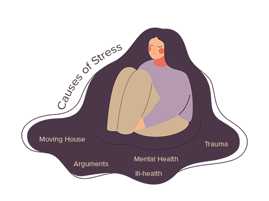 Causes of Stress